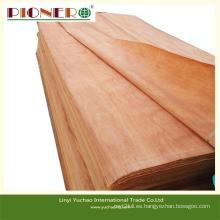 De Buena Calidad Chapa Plb Natural para la fabricación de madera contrachapada