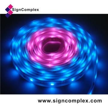 Waterproof Digital SMD LED Ribbon RGB