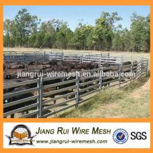 Panneau de bétail de 1,8 mx 2,1 m pour l'Australie (usine Anping)