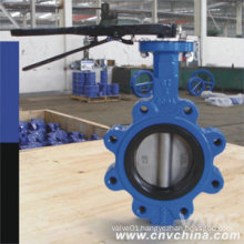 Pn6/Pn10/Pn16 Cast Iron Concentric Butterfly Valve