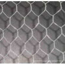 Chicken Wire Mesh Chicken Wire Netting Sizes China Supplier