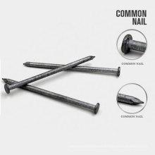 Todos los clavos de hierro redondos comunes de tamaño con buena calidad
