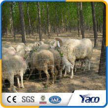 Field Fence against boars and wild deers made in china (ISO9001 factory)
