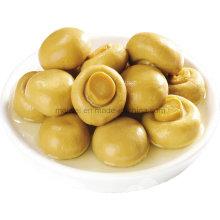Gesundheit Lebensmittel Canned Mushroom