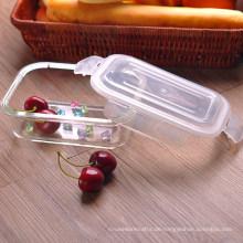 Borosilikatglasschale mit abschließbarem Deckel