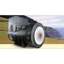 100 kva Three Phase Brushless Synchronous Alternator 3000rp