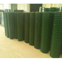Welded Mesh/ Galvanized Welded Wire Mesh/ PVC Coated Wire Mesh