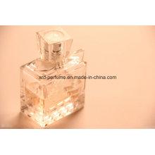 Bonne vente Usine Fashion Design Fresh Fragrance