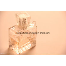 Good Sale Factory Fashion Design Fresh Fragrance
