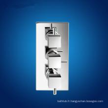 Robinet de douche TMV-2 Vanne mélangeuse à douche thermostatique à 2 voies sans déviateur