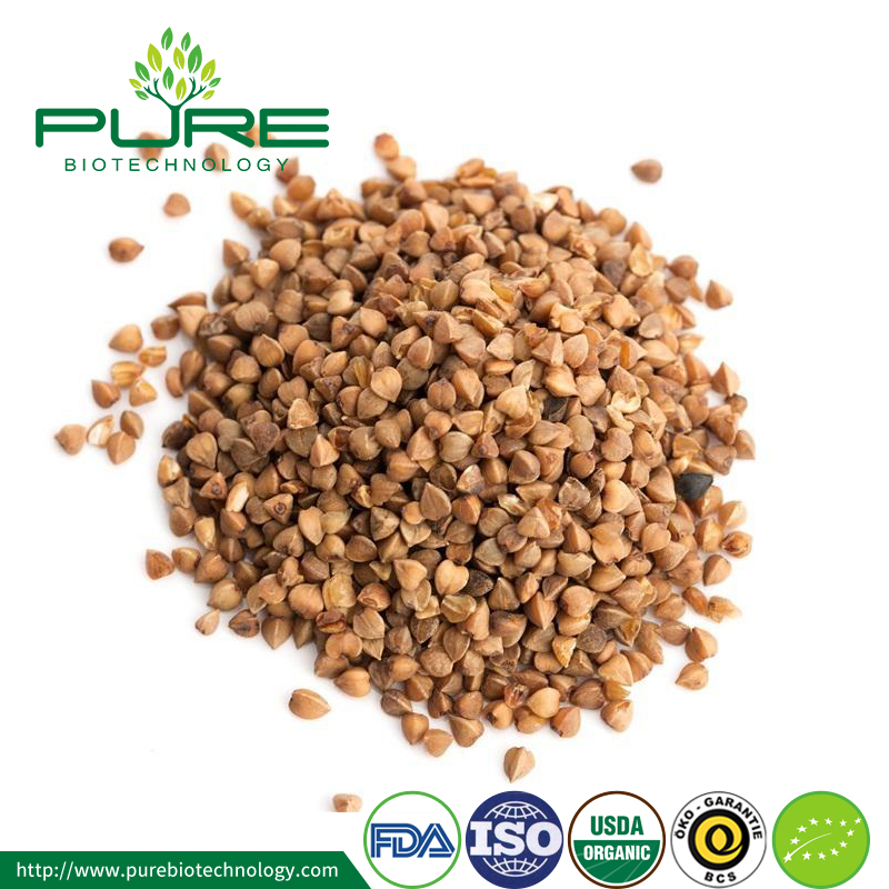 Wholesale roasted buckwheat