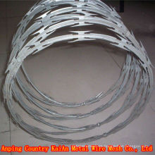 BTO / CBT --- 60/65 Alambre de la maquinilla de afeitar recubierto PVC / alambre de la maquinilla de afeitar galvanizado ---- 30 años fábrica