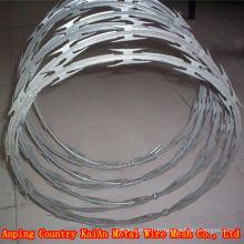 BTO / CBT --- 60/65 Fil de rasoir revêtu de PVC / fil de rasoir galvanisé ---- usine de 30 ans