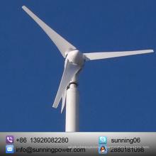 Petit générateur de turbine de vent de 300W 12V 24V pour la maison