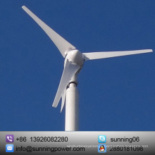 Gerador de turbina eólica pequeno de 300W 12V 24V para a casa
