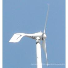 Pequeño generador de turbina de viento