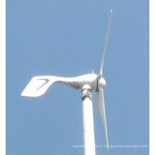 Petit générateur de turbine éolienne