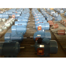 Electrical Motors/Motor (Three-P) for Sale