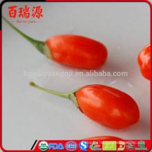 Best selling ningxia goji berry goji berries dried goji berry with reasonable price