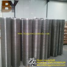 Filter aus rostfreiem Stahl geschweißt