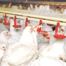 Auto-Geflügel-trinkendes System für Huhn-Bauernhof