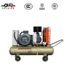 Energy Saving Portable Screw Air Compressor Screw Compressor Dlr-50aop