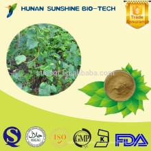 Kräuterextrakt Kava-Extrakt-Pulver für Beruhigungsmittel und Hypnotic