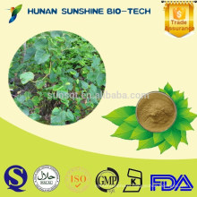 Herbal Extract Kava Extract Powder For Sedative And Hypnotic