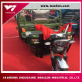 Three Wheeler 850*1200mm Cargo Electric Trike Tricycle for Adults