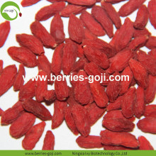 Pabrik Bulk Natural Packing Wolfberries