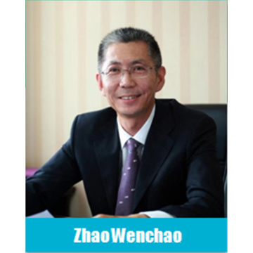 China Professionele commissie voor loodaccu's