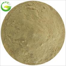 Micronutriments chélatés d'acide aminé d'irrigation par égouttement
