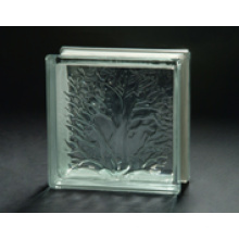 190 * 190 * 80mm Coral Glass Block avec AS / NZS 2208