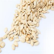 Chino brillo de piel semillas de girasol 2017 nueva cosecha