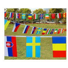 Promotional National Flag, Customized Hanging Flags