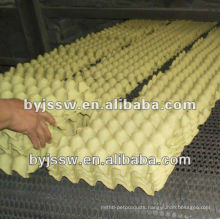 Paper Pulp Egg Carton Price