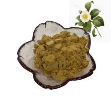 fornecimento de fábrica extrato de camélia sinensis natural puro / flor de planta de chá / extrato de flor de chá