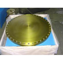 BL blind stainless steel RF flanges