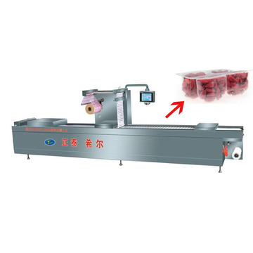 Dry Fruit Thermoforming Vacuum Packer Machine
