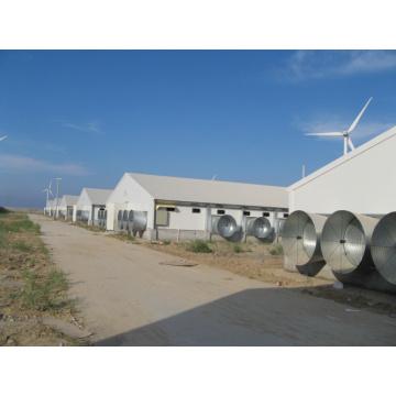 Galpón de estructura de acero galvanizado para pollo de engorde