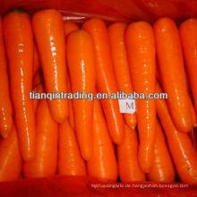China frische Karotten niedrigen Preis