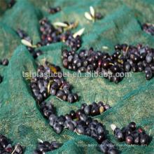 China Fornecer 100% de rede de colheita de oliva HDPE / rede de oliva para agricultura (32g-150g net de oliva)
