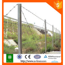 Barbed Wire/ Electric Galvanized and PVC barbed wire /barbed wire for safeguard