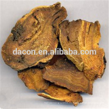 radix Et rhizoma rhei extracto polvo emulsión de reuma