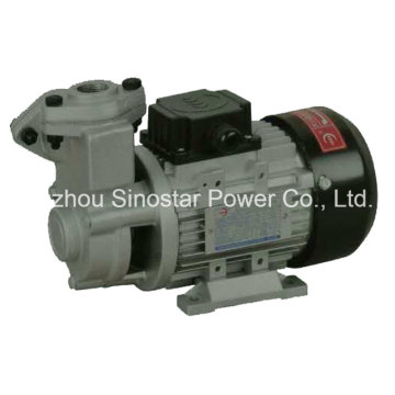 Ts Series High Temperature Fuel Pump for Industry Use
