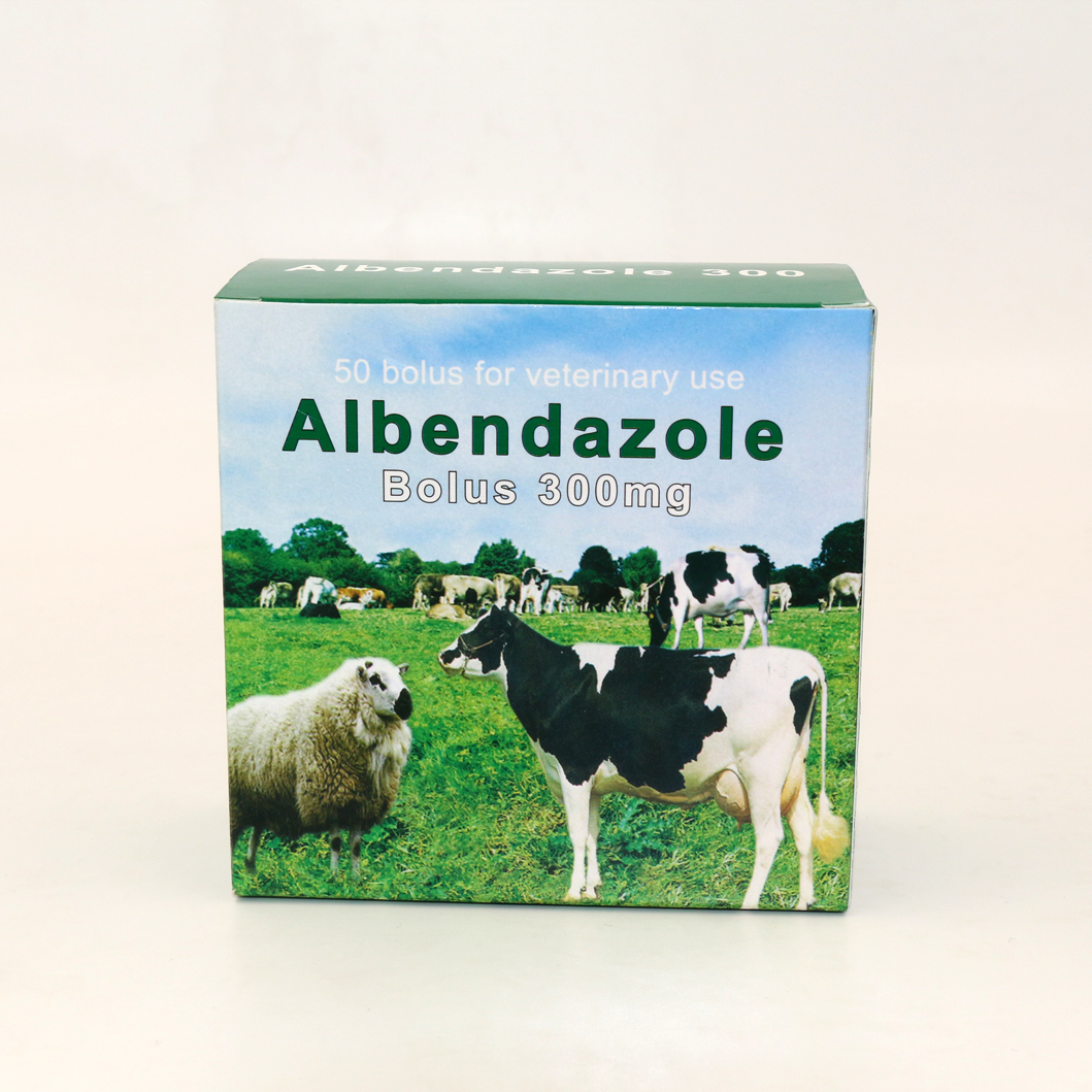 Albendazole Bolus 300mg for Antiparasite Animal Use