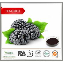 100% puro Anthocyanin do extrato da fruta do Mulberry 5-25%