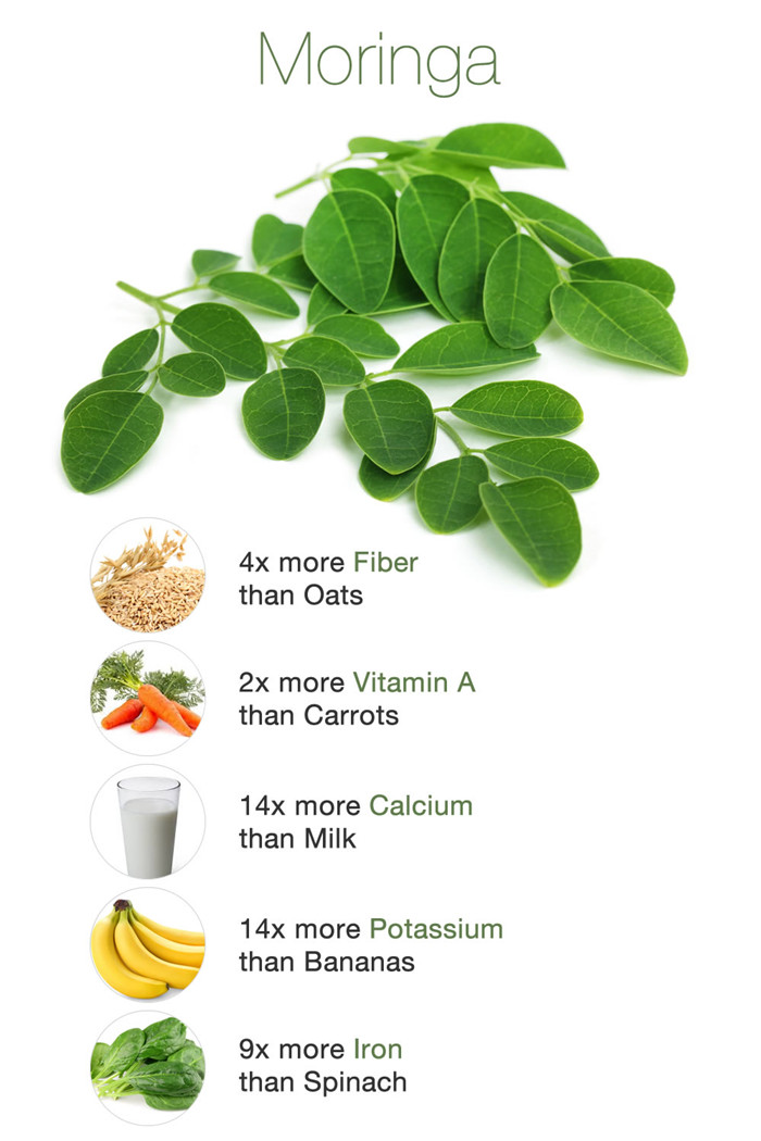Freeze Dried Moringa Leaf Extract ()