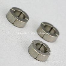 Kleiner Qualitäts-unregelmäßiger Segment-Magnet