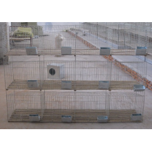 Rabbit Farming Cage
